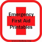 Emergency First Aid–Free Printables!